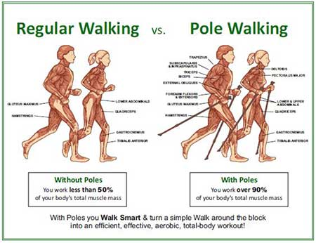 compare regular walking to Pole walking